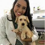 Revista-medicinaveterinaria-emfoco-Diagnosticoporimagem_ed07-Thays Ribeiro Pacó